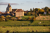 village of ambenay in the normandy countryside with its cows, rugles (27), france