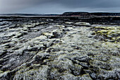 Stones and Moss along the Ring Road, Mountain Range in the background, Frost, Winter, Cold, Iceland