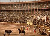 Bullfight, Barcelona, Spain, Photochrome Print, circa 1901