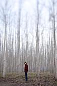 Adam Welch stands in a poplar tree farm in central Oregon.