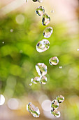 Close-up of water droplets