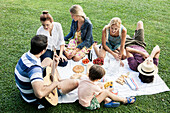 Summer picnic in the park with family and friends