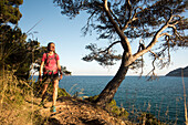 A young woman with a rucksack is hiking on a trail in the evening sun next to mediterranean pine trees, behind her the sea, Canyamel,  Mallorca, Balearic Islands, Spain