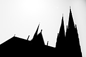 Silhouette, Saint Ludgerus cathedral in Billerbeck, neo-Gothic Catholic pilgrimage church, diocese Münster, Billerbeck, North Rhine-Westphalia, Germany