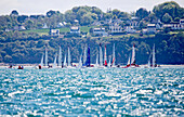 23 Diam 24 One Design at the Grand Prix Guyader, Bay of Douarnenez, Brittany, France.. The Diam 24OD is fast in light winds and confident in stronger breeze without the necessity for high level sporting prowess. The Diam 24 the new boat for the Tour de Fr