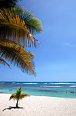'Caribbean sea  Boca Chica beach  Playa Boca Chica - Santo Domingo  Boca Chica is the most popular beach and close to capital Santo Domingo. It is approximately 25 minutes from the capital to the east past the International Airport of Las Americas.    The