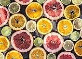 Variety of citrus fruit slices