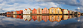 Panorama with colorful storage houses on the banks of the River Nidelva in the old town of Trondheim in the summer, Trondheim, Sør-Trøndelag, Norway, Scandinavia