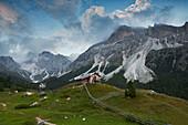 Ncisles, Odle group, Dolomites, South Tyrol, Bolzano, Italy.