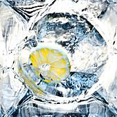 Zitrone auf Eis, Longdrink Getränk, Cocktail