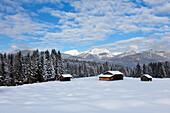 Haystack at the Buckelwiesen, near Kruen, view to Bishop and Krottenkopf, Ester range, Bavaria, GermanyHay