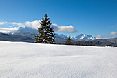 View from the Buckelwiesen near Kruen to Wetterstein range and Zugspitz range with Alpspitze, Zugspitze and Waxenstein, Bavaria, Germany