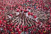 Spain, Catalunya,Tarragona City, Castellers Festival.