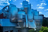 Weisman Art Museum Minnesota University Campus Minneapolis Minnesota Usa.
