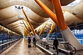 Spain, Europe, Eurozone, Spanish, MAD, Adolfo Suárez Madrid–Barajas Airport, international, inside, interior, terminal, concourse, gate area, Richard Rogers, Antonio Lamelas, architecure, bamboo ceiling, metal tree support, moving sidewalk, arriving passe