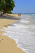 Beach Barbados Caribbean Island Cruise Norwegian Sun Lesser Antilles.