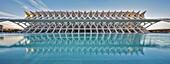 Panoramic view of the El Museu de les Ciencies Principe Felipe (Science Museum), located in the City of Arts and Sciences, designed by the Architect Santiago Calatrava Valls in Ciutata de les Arts i les Ciencies, Valencia, Valencian Community, Spain.