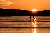 Silhouettes of skaters in backlight of the red sunset on the Lake Rangsdorf - Germany, Brandenburg, Rangsdorf