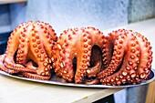 Cooked octopus. Santiago de Compostela. La Coruña, Galicia, España.