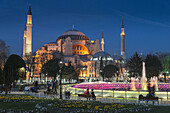 The floodlit domes and minarets of Aya Sofya, Sultanahmet, Istanbul, Turkey.