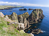 Landscape on West Shetland. the cliffs between Silwick and Westerwick, in the background south shetland with Fitful Head. Europe, Great Britain, Scotland, Northern Isles, Shetland, May.
