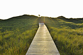 Wooden Walkway through Dunes with Couple, Sun, Summer, Norddorf, Amrum, Schleswig-Holstein, Germany.