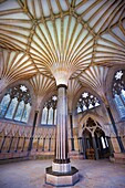 The vaulted ceiling of the Chapter House of the medieval Wells Cathedral built in the Early English Gothic style in 1175, Wells Somerset, England.
