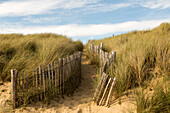 Locmariaquer, fenced beach access through grassy dunes, Côte des Mégalithes, Brittany, France