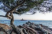 Europe, France, Var, Cornice of Esterel. Saint-Raphael. The island of ´Tour d´Or´, Cape Dramont