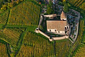 France, Haut Rhin 68, Wines road, village of Hunawihr, fortified church of Saint Jacques le Majeur aerial view
