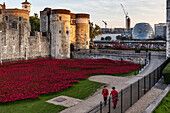 Poppy Display at The Tower of London To Commemorate the 100 year Anniversary of the First World War, London, England.