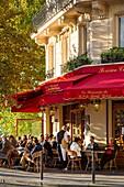 Late afternoon sunlight on La Brasserie de Ile Saint-Louis Cafe, Ile Saint-Louis, Paris, France.