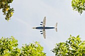 Flying airplane, blue sky and trees. Conceptual image of travel and the environment.