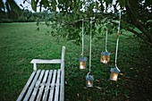 Lanterns hanging from a tree in the garden white bench