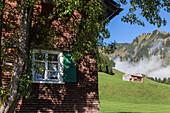 Holzhaus, Fenster, Bregenzerwald, grüne Wiesen, idylle, romantisch, traditionelle Häuser, Bergen, Berglandschaft, Bauernhäuser, Landwirtschaft, Hütte, Almwiesen, Bregenzerwald, Vorarlberg, Österreich