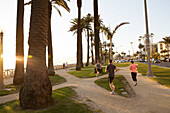 Joggers run through Palisades Park in the late afternoon sun, Santa Monica, City of Los Angeles, California, USA.