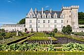 Gardens and Château de Villandry. Its famous Renaissance gardens include a water garden, ornamental flower gardens, and vegetable gardens. Villandry, Indre-et-Loire, Loire Valley, France, Europe.