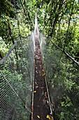 Suspension Bridge, Rainmaker Conservation Project, Costa Rica.