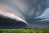 Slow moving tornadic supercell speeds up and gusts out as a fast moving shelf cloud July 12, 2004 near Bartlett Nebraska.