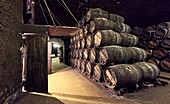'''''El calado'''' cellar at R. Lopez de Heredia Viña Tondonia winery. Haro. La Rioja. Spain.'''