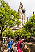 Tourists taking photos of the belltower of the cathedral in the historical centre, Seville, Andalusia, province Seville, Spain