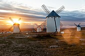 One of the main sights on this trip is here in the region of Ciudad Real, Campo de Criptana. This village presents the most famous image of La Mancha, thanks to the centuries-old windmills located on the hill that presides over it, against which Don Quixo