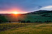 Landscape photo of a beautiful sunset over the rolling hills of Tuscany, with Pienza on the hilltop in the right. Val D´Orcia, Tuscany, Italy.
