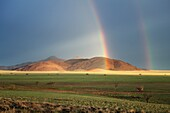 Landscape Image of sunlight illuminating a mountain below a rainstorm. Namib Rand, Namibia.