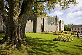 Killyleagh Castle, Killyleagh, Co Down, Ireland.