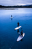SUP / Paddle surf at the bay of San Vicente de la Barquera, Cantabria, Spain