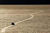 Tracks left by mysterious moving rocks on the dried flat mud at the Racetrack Playa, Death Valley National Park, California.