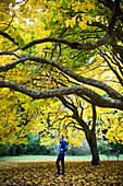 A young woman stands underneath a bright, yellow tree on an autumn afternoon in a park in Seattle, WA
