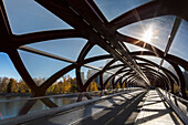 'Interesting silhouette design of cylindrical bridge with sunburst and trees and buildings in the background; Calgary, Alberta, Canada'