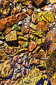'Close up of colourful creek stones underwater with ripples in water; Waterton, Alberta, Canada'